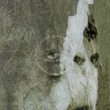 IMAGO ANIMAE by M.M. BERTIN-CARON |Luminis Poesis