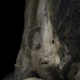 IMAGO ANIMAE by M.M. BERTIN-CARON | Luminis Poesis